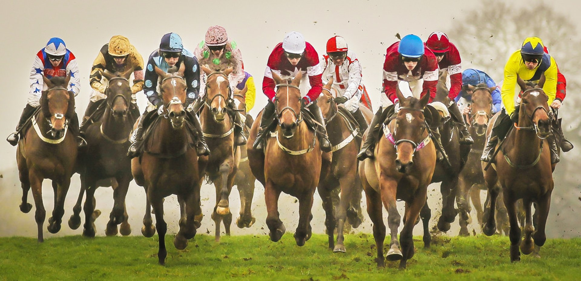 Supporting your players during Cheltenham Festival